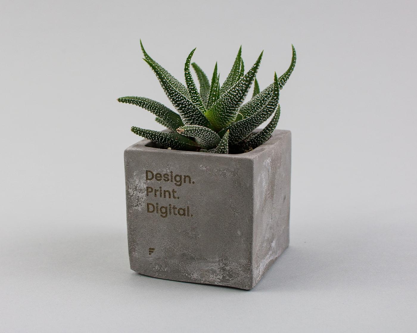 Promotional-Plant-Pots